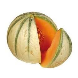 Colorant Barbe à Papa Melon